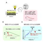 【神経科学トピックス】感覚入力と行動の相関関係からどのように神経メカニズムを推定できるか?